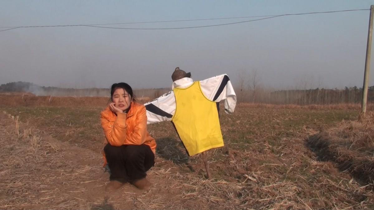 ju_zhao_3-zi_hua_xiang_47gong_li_.jpg